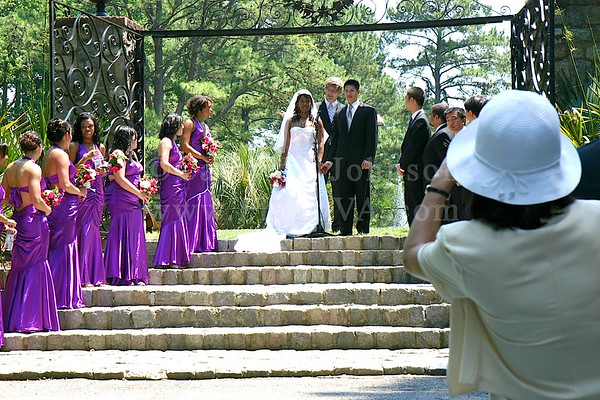 Norfolk Wedding Photography - Norfolk Botanical Gardens