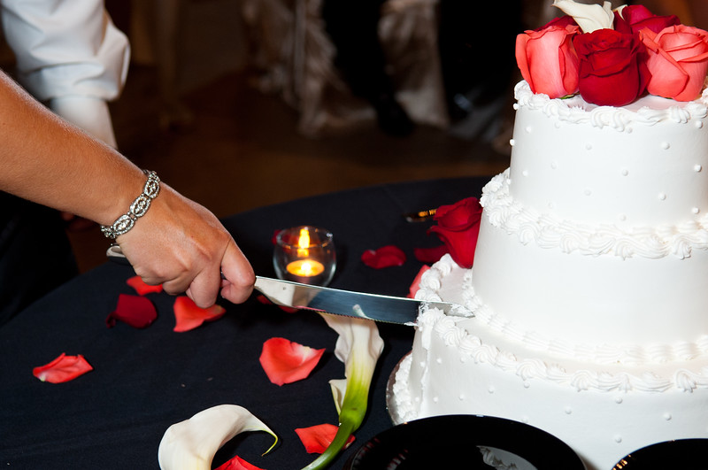 Jim and Robyn Wedding Day-450