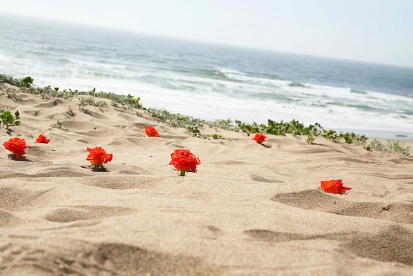 BeachDetails