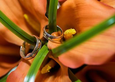 rings_9238