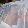 Profile shot under the veil