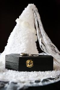 Jon-Alicia-Wedding-9964