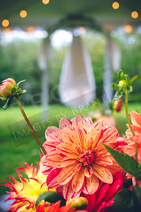 yelm_wedding_photographer_Maples_018_D75_9777