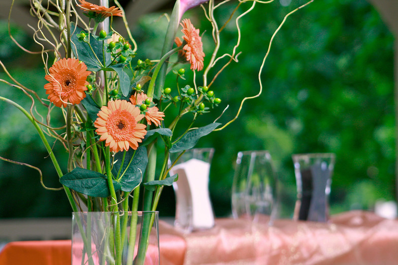Josh & Kristi Wedding (c2)  602