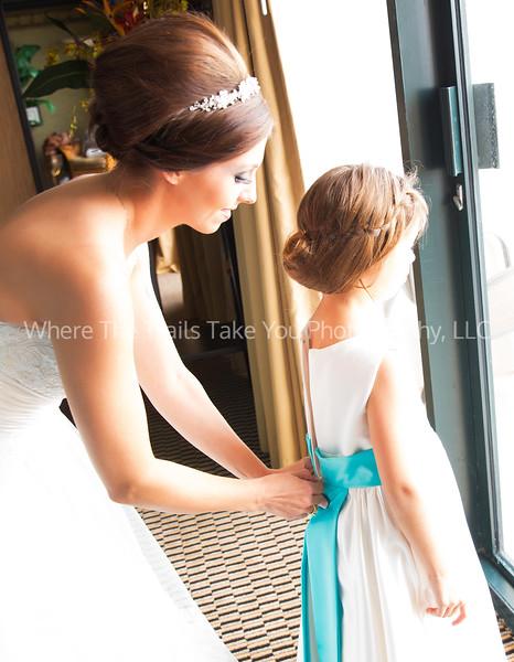 Zipping Up Bellas Dress CROP