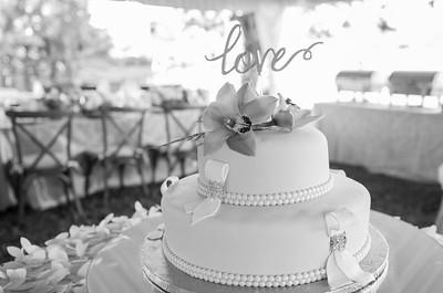 David Sutta Photography - Judith and Gordan Wedding Pembroke Pines Florida-130-2