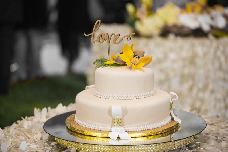 David Sutta Photography - Judith and Gordan Wedding Pembroke Pines Florida-273-2