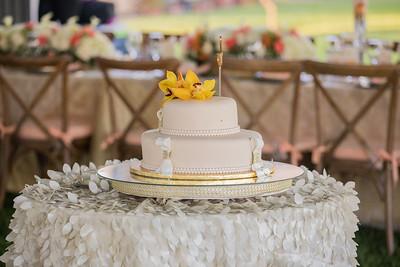 David Sutta Photography - Judith and Gordan Wedding Pembroke Pines Florida-117