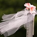 wedding_1394