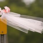 wedding_1386
