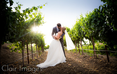 Julie & Brian's Wedding