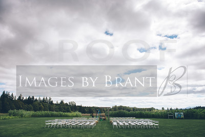 Nisqually_Springs_Yelm_wedding_photographer_0113DS3_2900-HDR-3