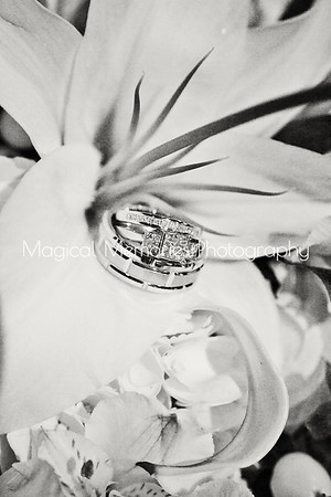 MMP-IMG_0097-119