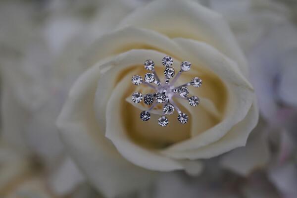 Catherine-Lacey-Photography-Calamigos-Ranch-Malibu-Wedding-Karen-James-0091