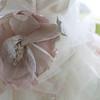 Catherine-Lacey-Photography-Calamigos-Ranch-Malibu-Wedding-Karen-James-0423