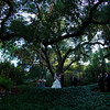 Catherine-Lacey-Photography-Calamigos-Ranch-2901