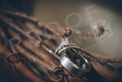 yelm_wedding_photographer_Bush_052_D75_1513