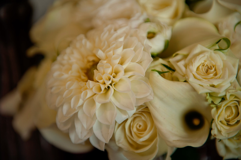 Becca Estrada Photography- Kirshner Wedding - Pre-Ceremony-22