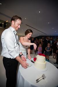 cake_1795