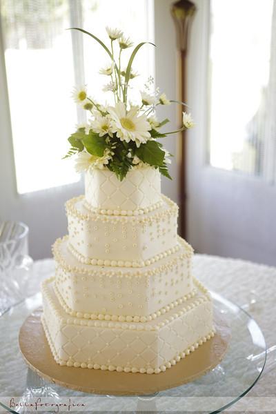 Katie-Neal-Wedding-2011-302