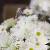 Katie-Neal-Wedding-2011-035