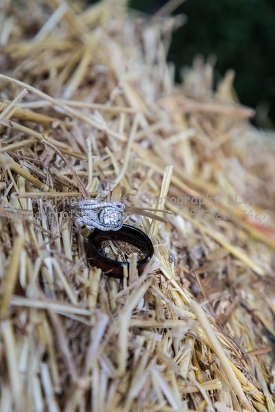 Wedding (19 of 672)