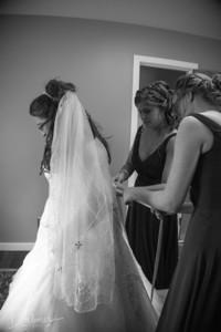 Pre-wedding Photos Willis Wedding