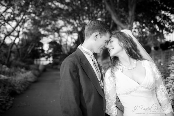 Weddings: Kelly & Vince Thiele