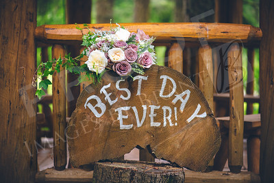 yelm_wedding_photographer_Akins_014_D75_4309