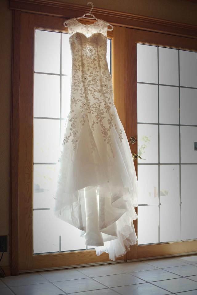 Cortni's Dress