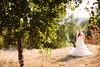 wedding_0528