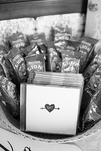 kimi_taran_weddings-3761
