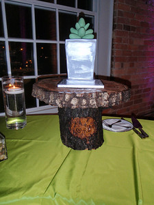 The official wedding cake with edible succulent decoration!