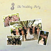 3 - The Wedding Party