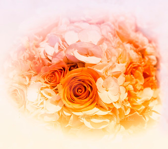 Hall Flowers 2040 cfVin