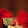 Krystal-Wedding-04102010-011