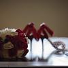 Krystal-Wedding-04102010-039