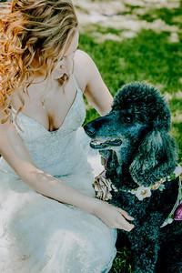 00801--©ADHPhotography2018--KyerMeganFeeney--Wedding--June2