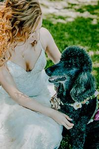 00799--©ADHPhotography2018--KyerMeganFeeney--Wedding--June2