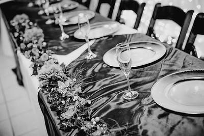 02848--©ADHPhotography2018--KyerMeganFeeney--Wedding--June2
