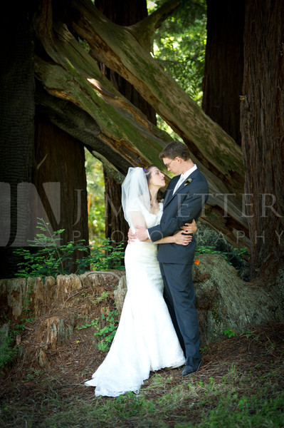 Wedding in the Redwood Forest