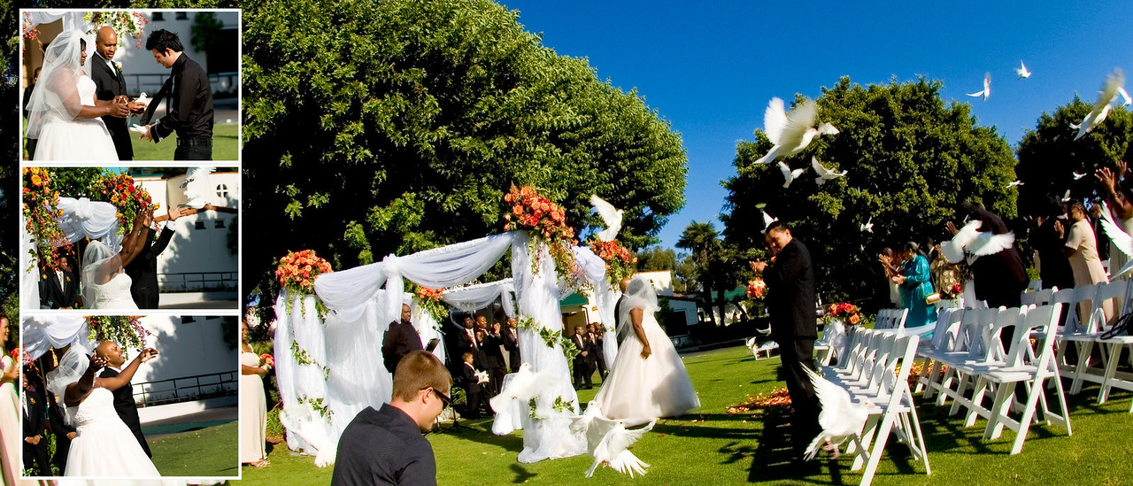 <strong>Lakewood country club wedding</strong> : wedding doves release