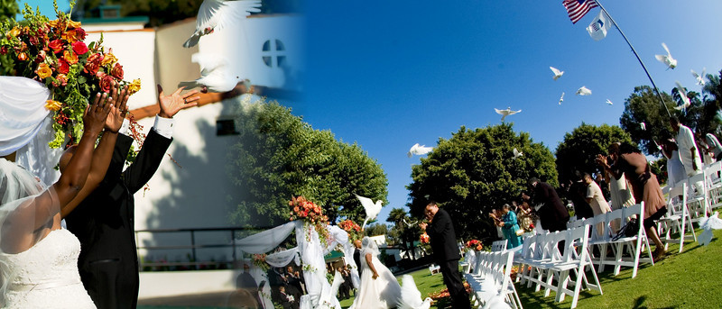 Wedding doves