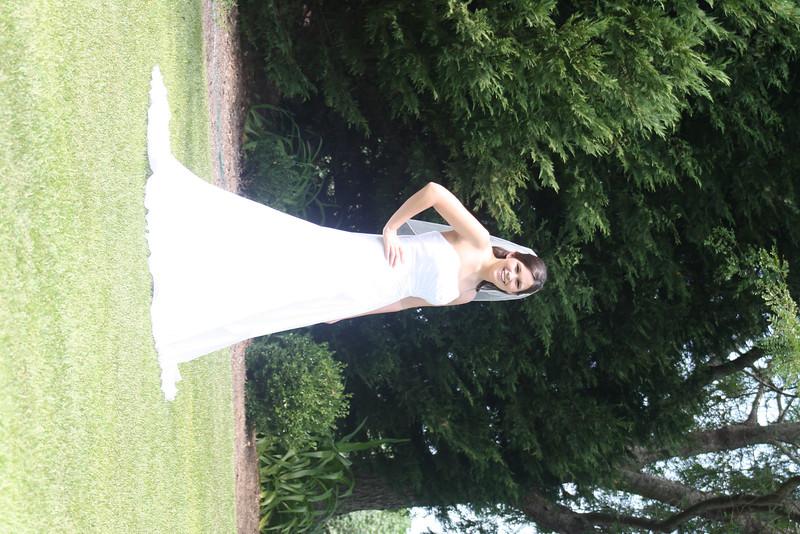 dress 090