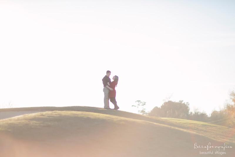 Lauren-Engagement-2014-10