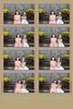 Lauren and Weston's Wedding 2013