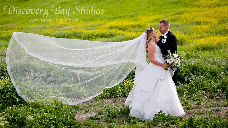 PLAY VIDEO - Leal Vineyards Wedding Macie & Scott