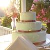 Leland and Lacie Wedding-1430