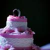 Linda_Ceremony__20090502_334