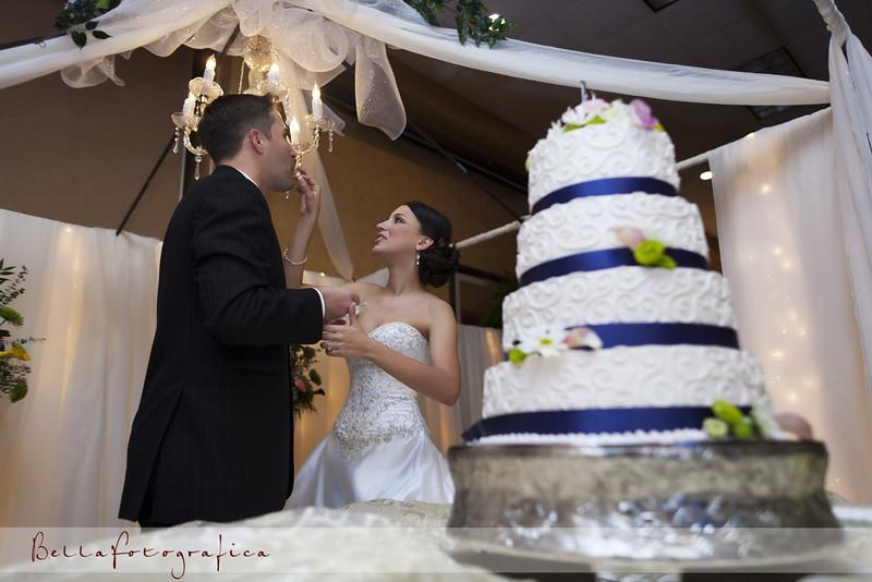 Beaumont-Wedding-Reception-2010-592